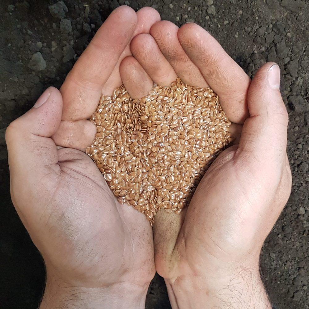 SeCan CDC Sorrel Flax