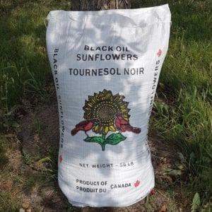 50 lb bag of Black Oil Sunflower Seeds