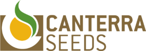Canterra Seeds Transparent Logo