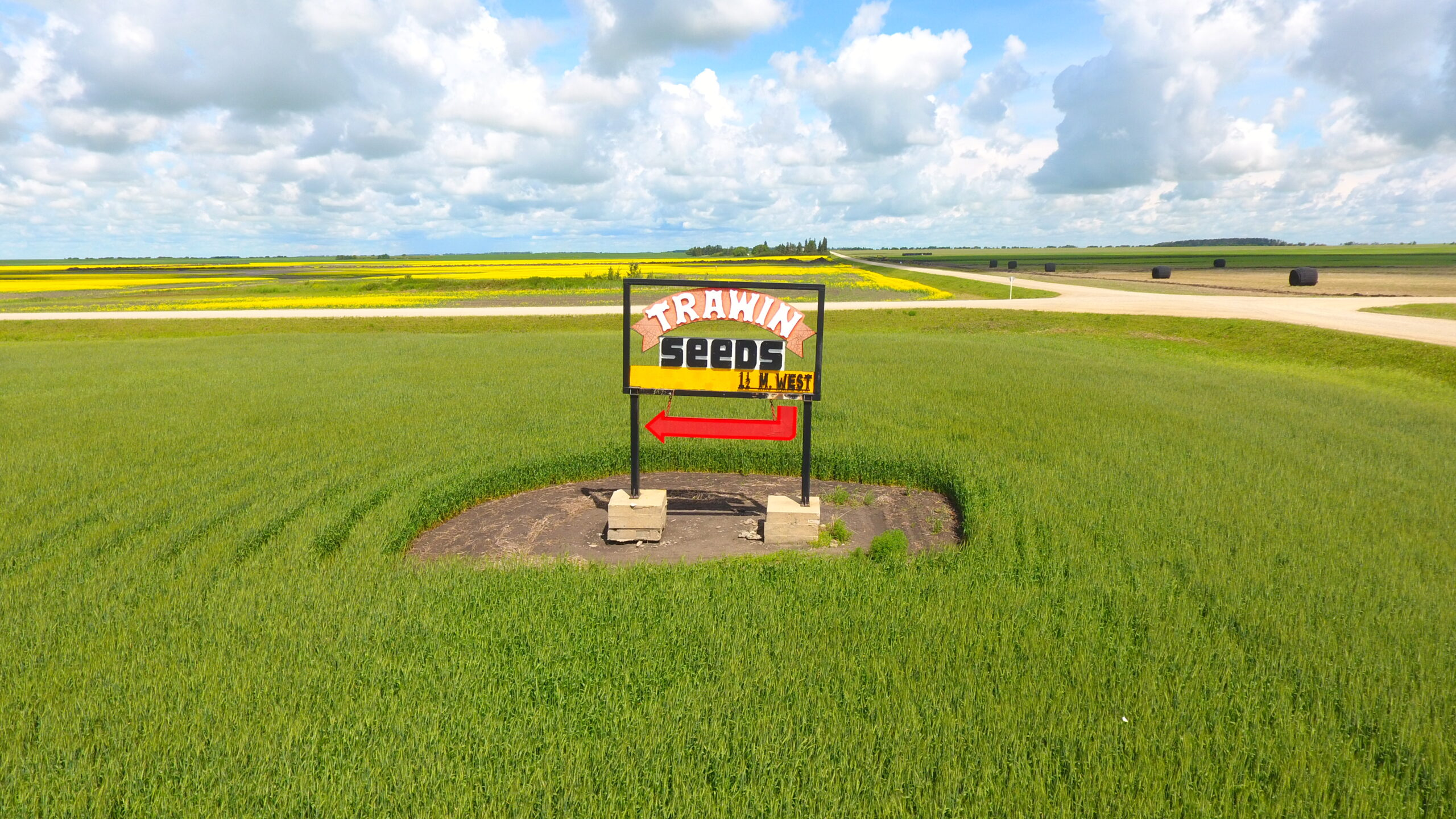 Naisberry Grid Road Trawin Seeds Sign