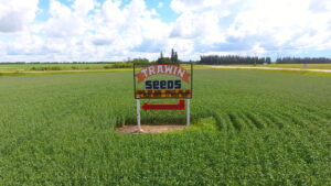 Highway 3 Trawin Seeds Sign