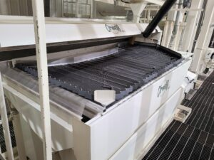 Trawin Seeds Gravity Table Separator