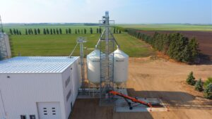 Inflow Bucket Elevator for Seed Cleaning Plant